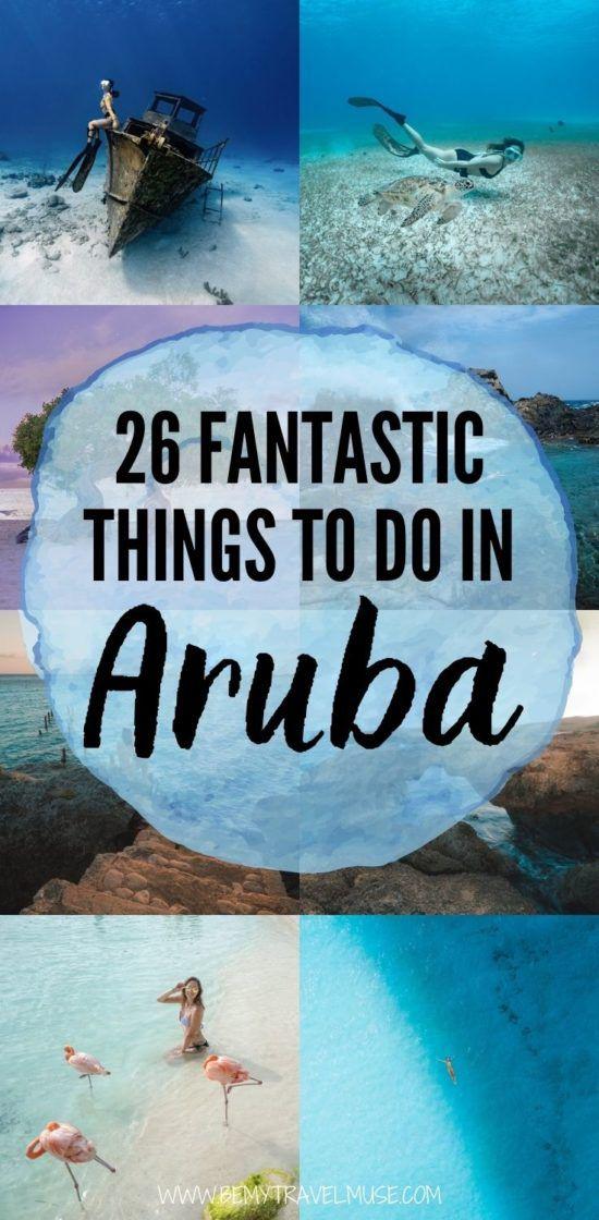 26 лучших занятий на Арубе, включая приключения на свежем воздухе, такие как подводное плавание с аквалангом, подводное плавание, походы, а также расслабляющие мероприятия, такие как спа, круиз, обеды и т. Д. Рекомендации отеля включены! #Aruba