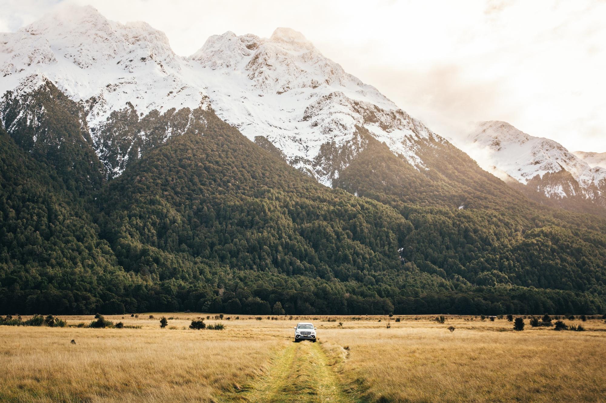 Карантинные сборы Новой Зеландии