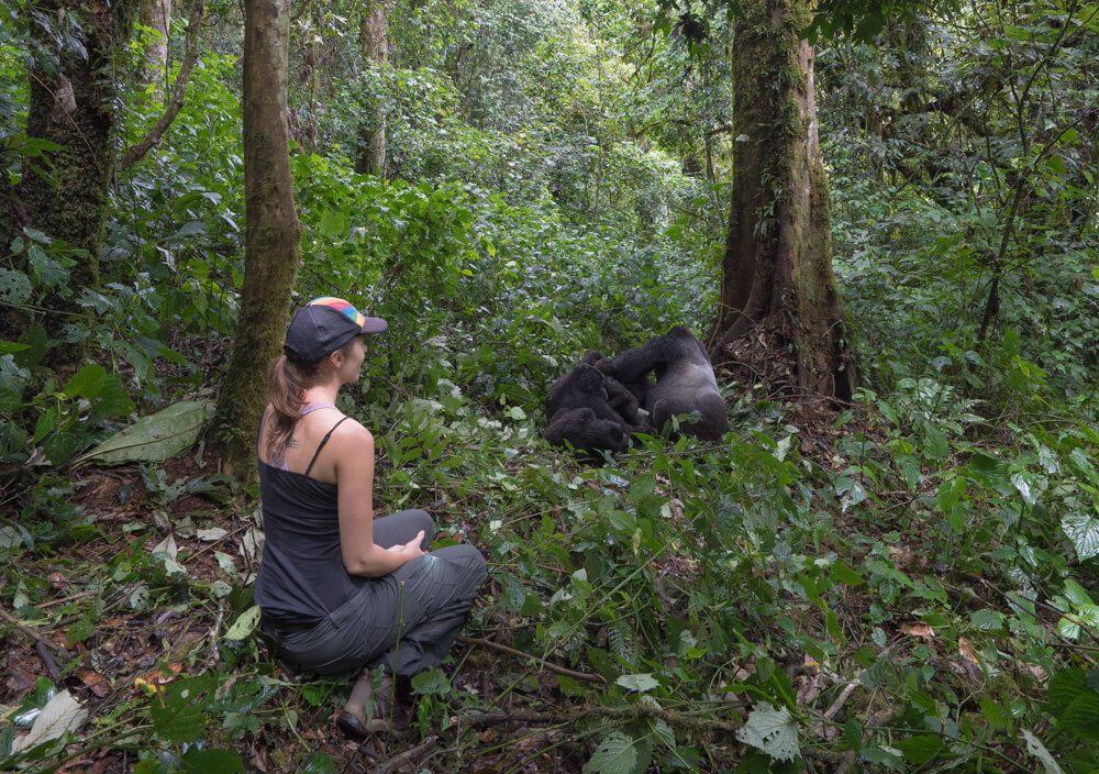 горилла, треккинг, Уганда