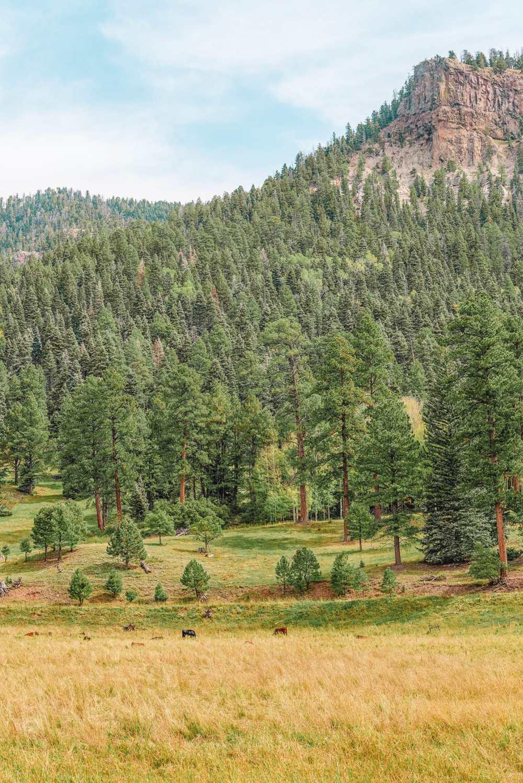 Чем заняться в Колорадо (14)