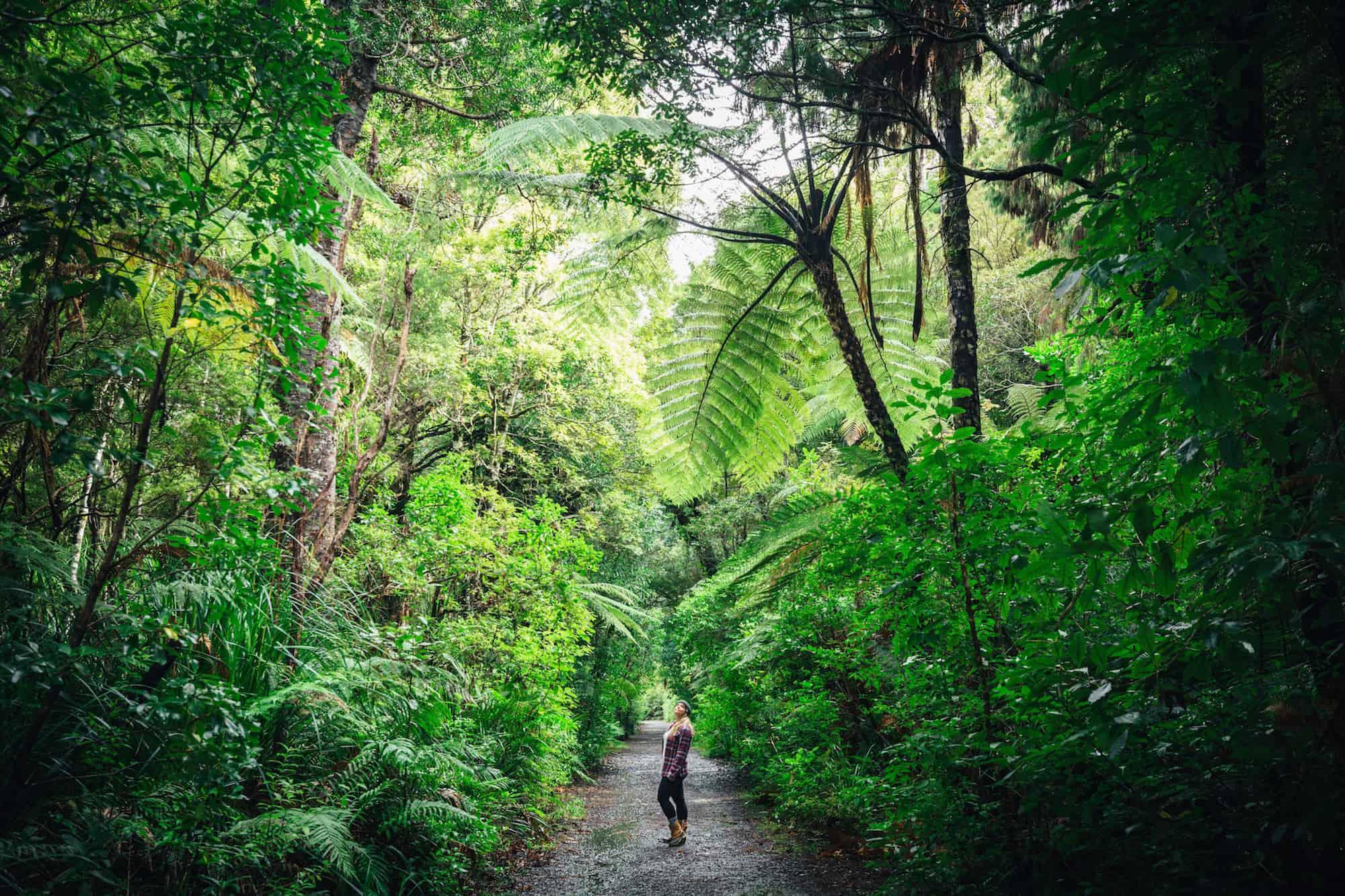 экологические заповедники Новой Зеландии