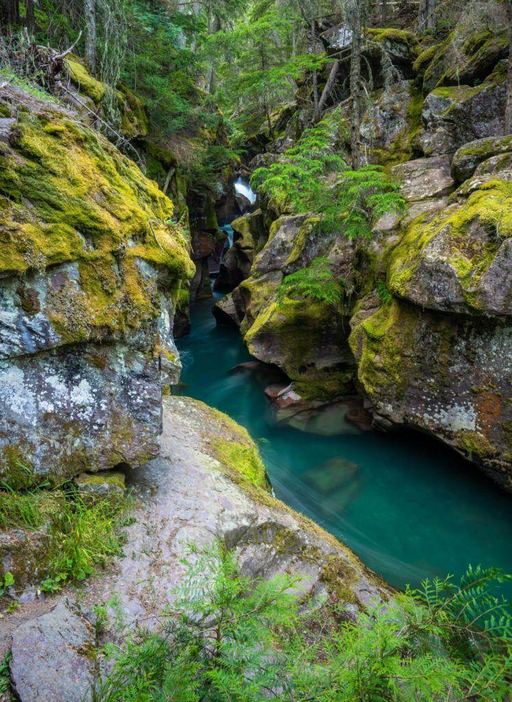 национальный парк ледников чем заняться лавинное ущелье