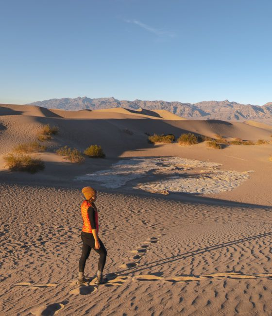 Мескитовые плоские песчаные дюны