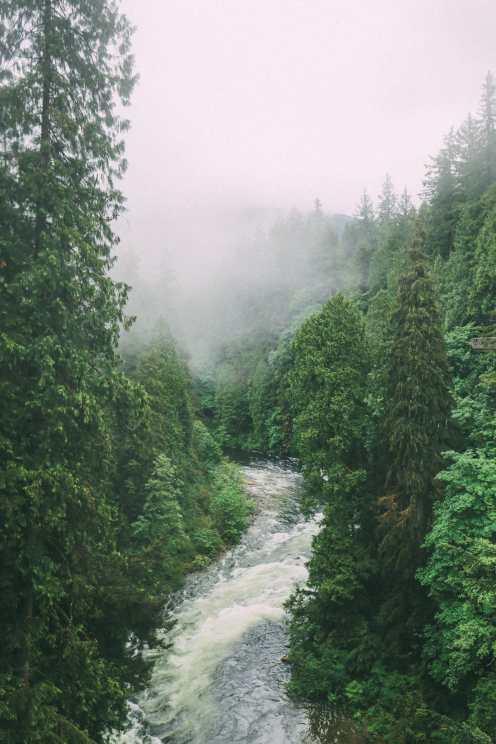Как провести ленивый день в Ванкувере, Канада ... (Плюс, исследование невероятного подвесного моста Капилано) (32)