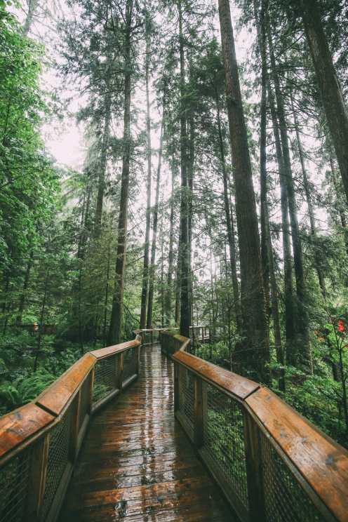 Как провести ленивый день в Ванкувере, Канада ... (Плюс, Исследование невероятного подвесного моста Капилано) (25)