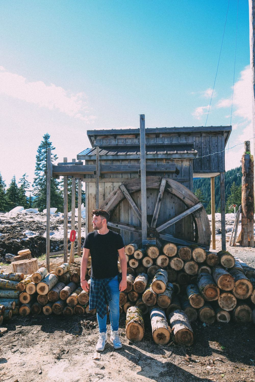 В поисках медведей гризли на Горе Гроуз ... В Ванкувере, Канада (47)