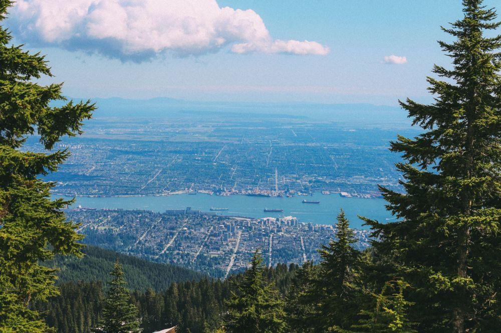 В поисках медведей гризли на горе Гроуз ... В Ванкувере, Канада (38)