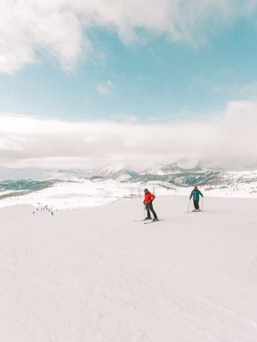 Найти дикого лося и покататься на лыжах в Саншайн-Виллидж ... в Банфе, Канада (14)