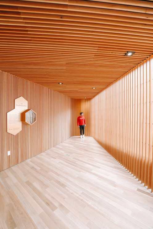 В поисках архитектурных шедевров Калгари - Studio Bell и Central Библиотека (44)