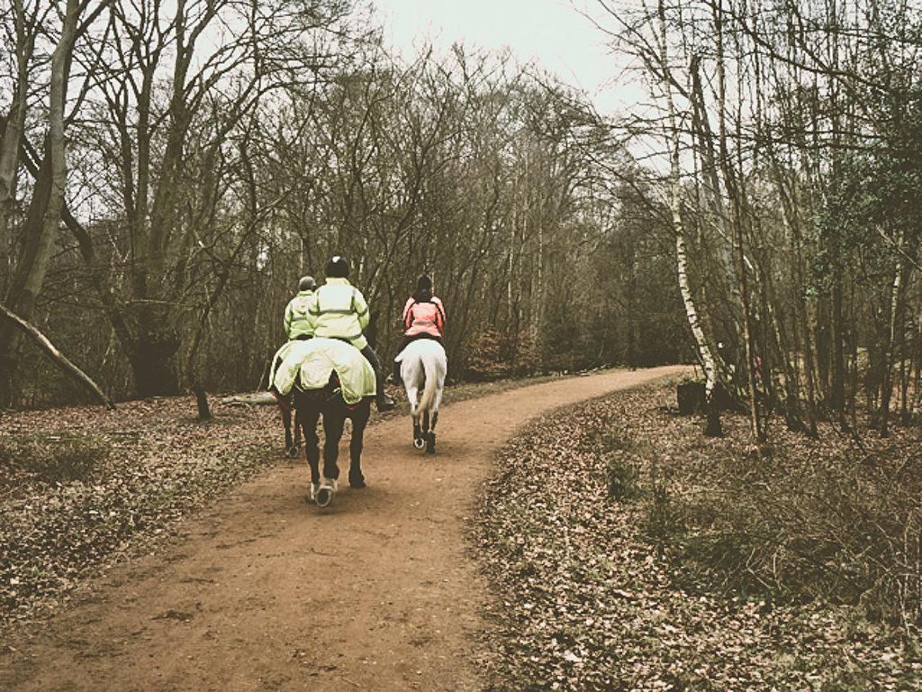 Верховая езда в Эппинговом лесу