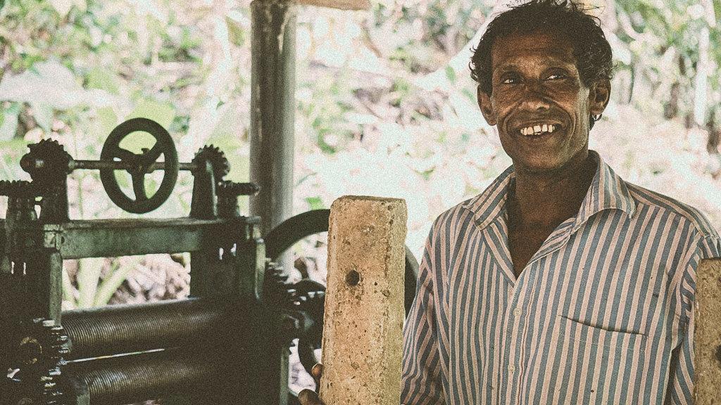 Туризм в Шри-Ланке [19659032] Общественный туризм в Шри-Ланке