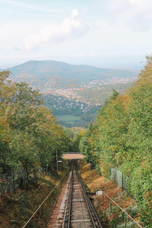 Чем заняться в Шварцвальде (15)