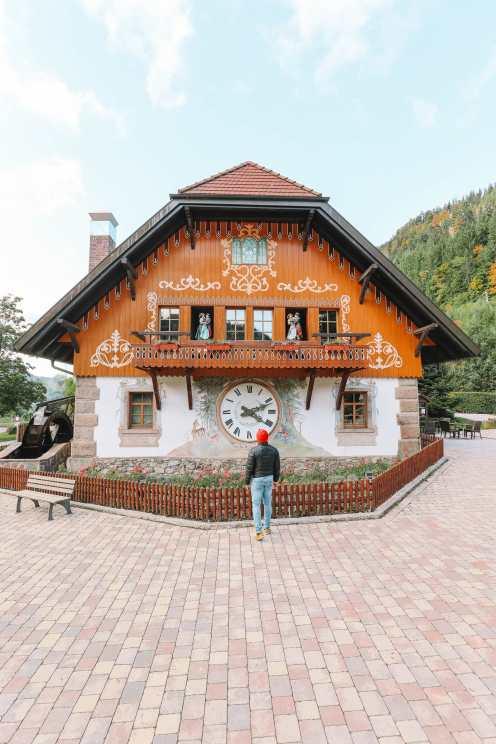 Чем заняться в Шварцвальде (44)
