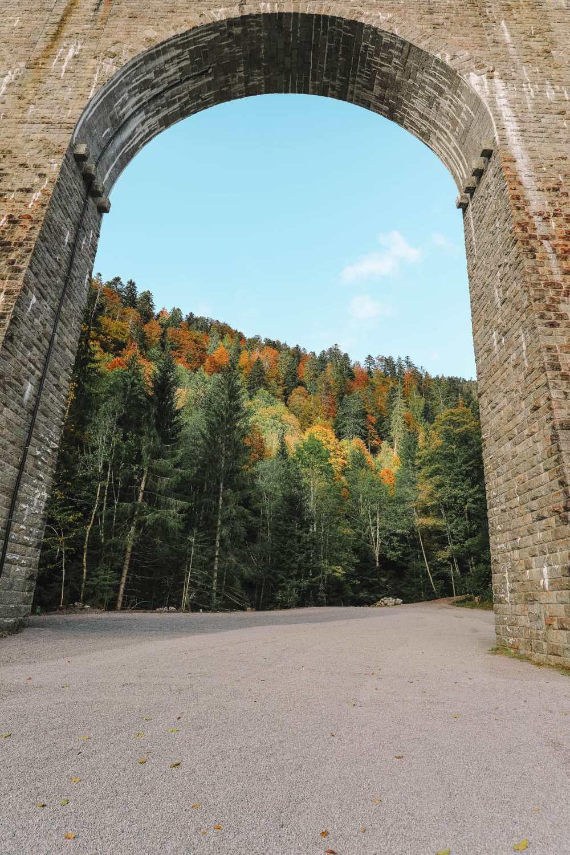 Чем заняться в Шварцвальде (46)