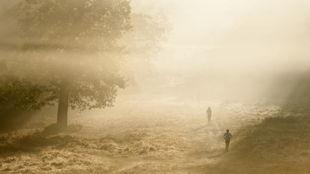 Джоггеры в Ричмонд-парке в Лондоне в туманный день