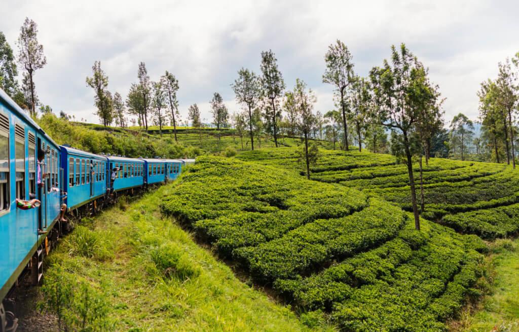 Негомбо - Канди поездом