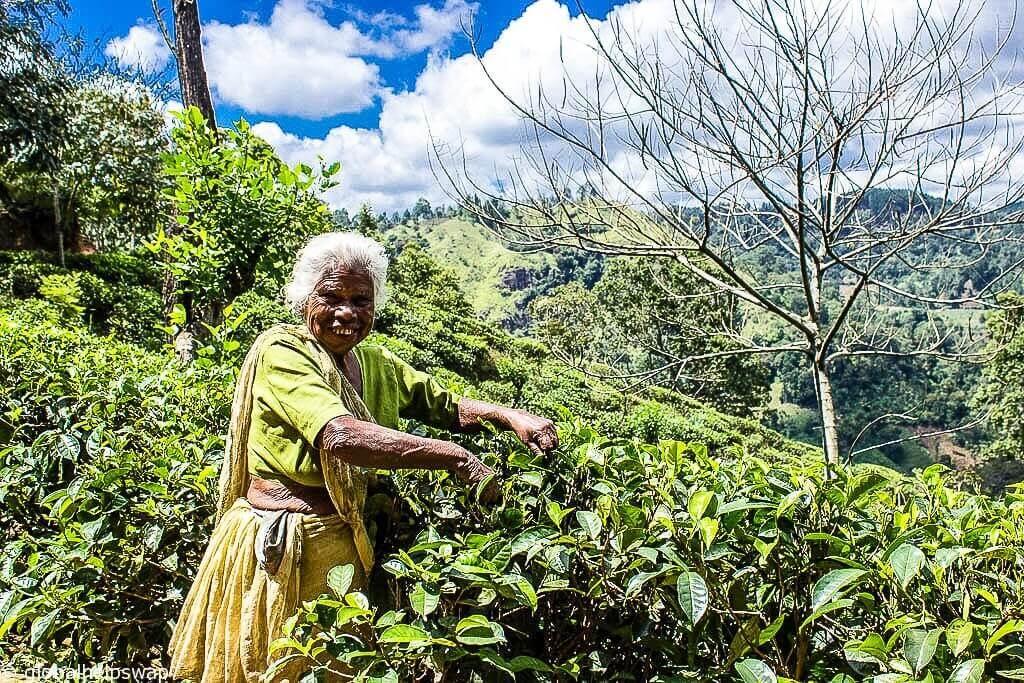 Безопасна ли Шри-Ланка