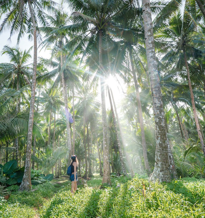 практика медитации во время путешествия