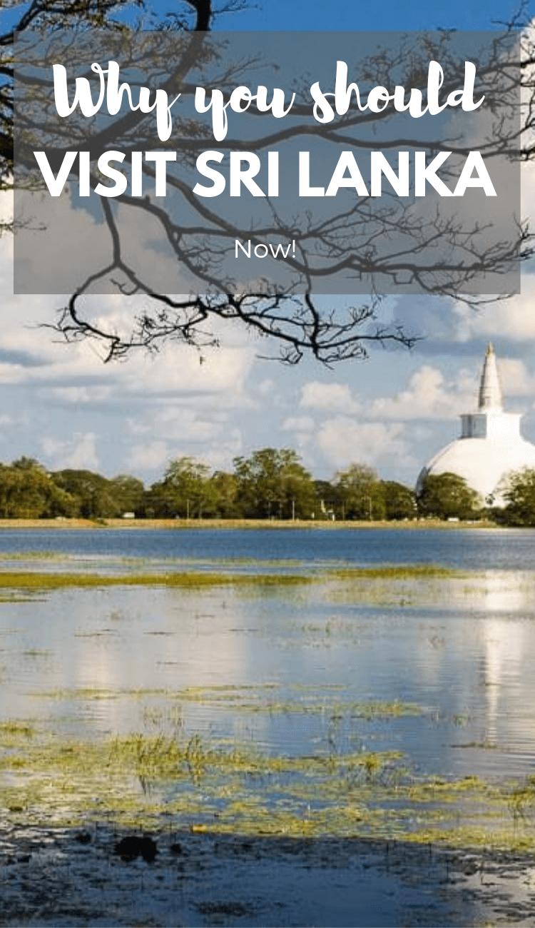 Безопасно ли посещать Шри-Ланку? Почему вам стоит посетить Шри-Ланку сейчас.