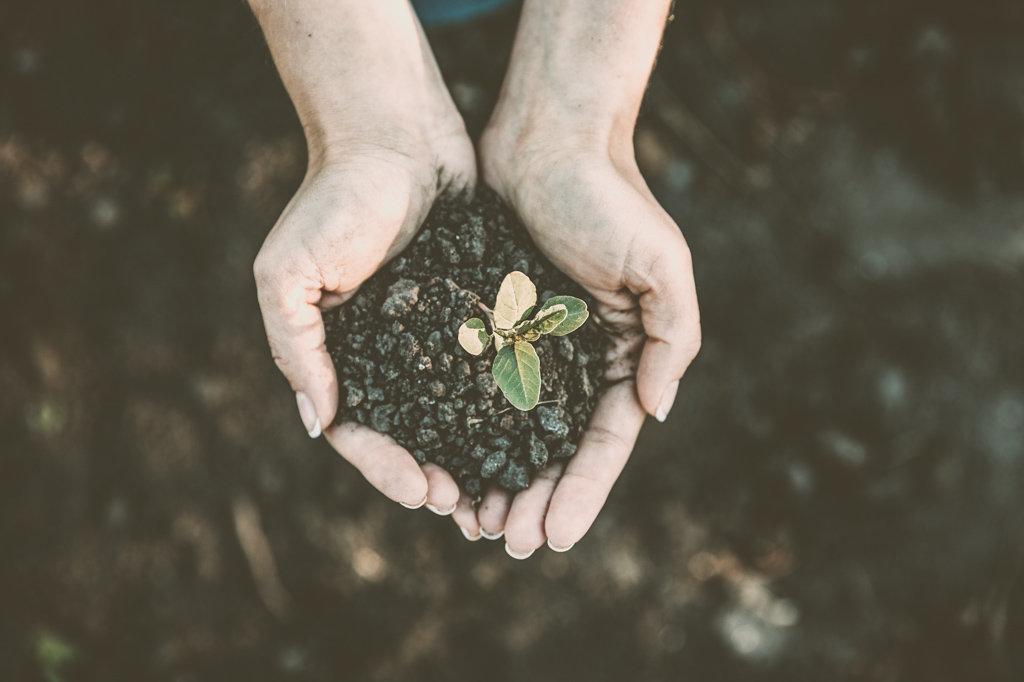 Всемирный день окружающей среды 2020 [19659003] Всемирный день окружающей среды 2020 года