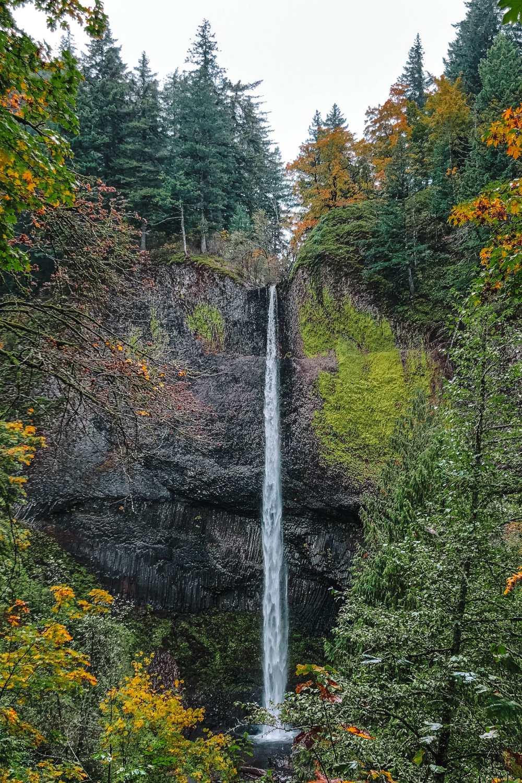 Лучшие походы в Орегоне (4)