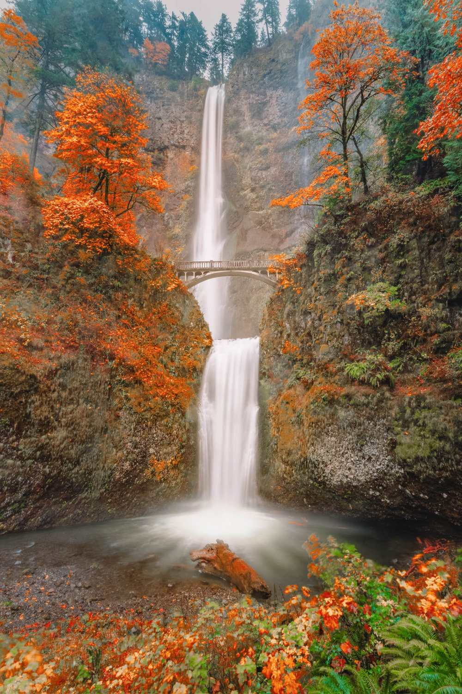 Лучшие походы в Орегоне (16)