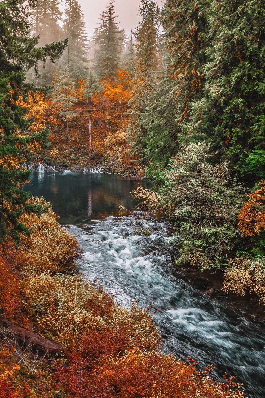 Лучшие походы в Орегоне (6)