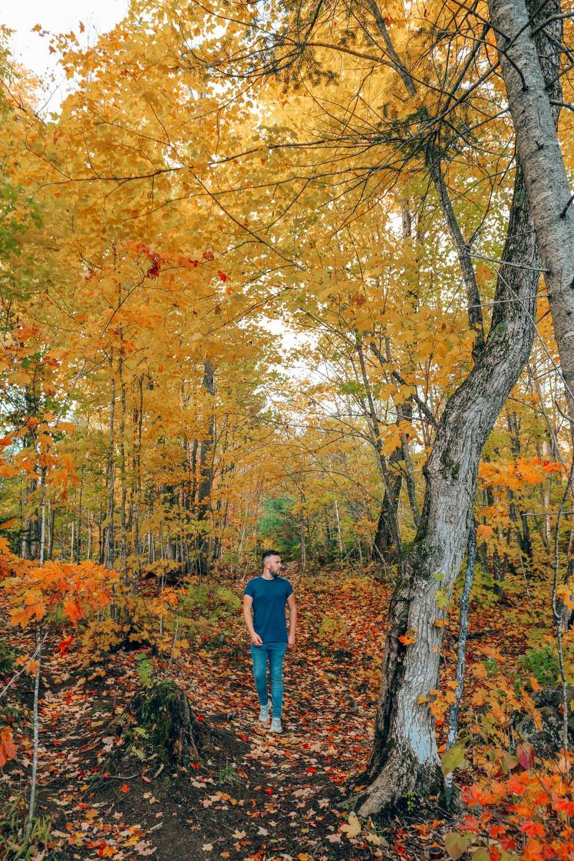 Затеряться в природе (и с бобрами) в Квебеке, Канада (10)