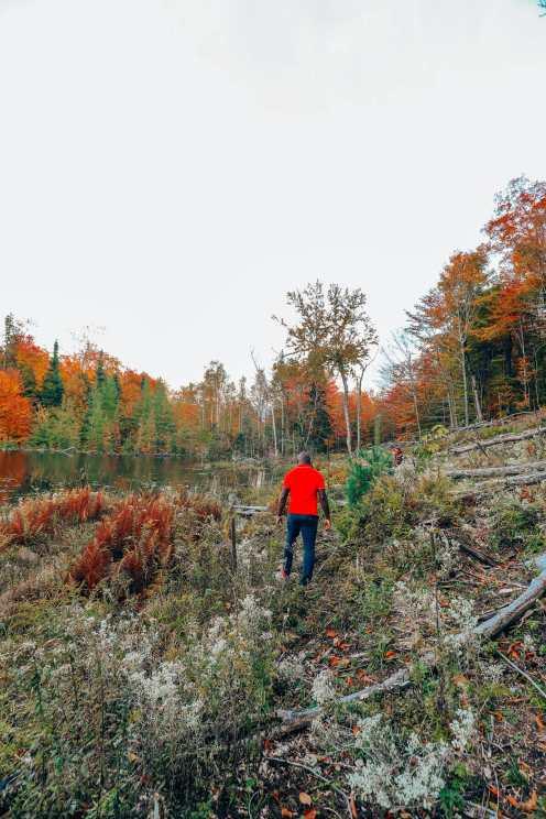 Затеряться в природе (и с бобрами) в Квебеке, Канада (21)