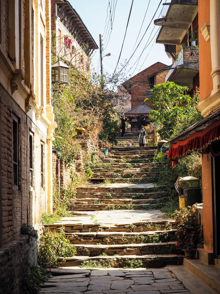 Поход в Бандипур