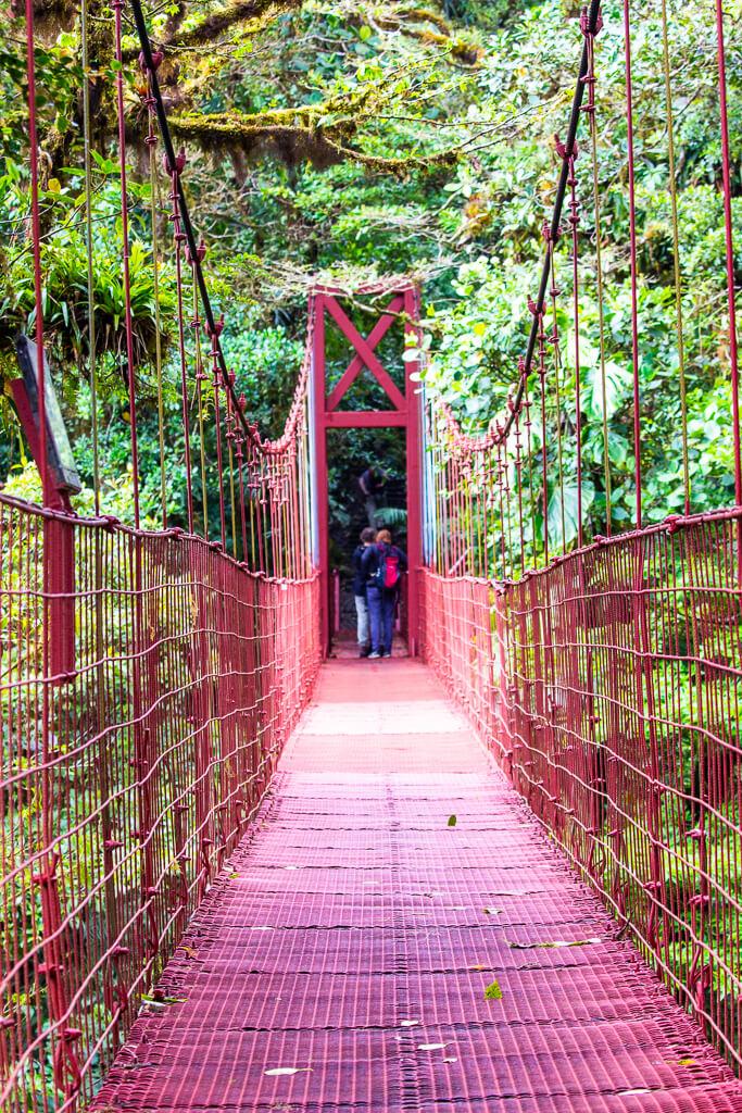 Висячие мосты, Скайуок, Монтеверде