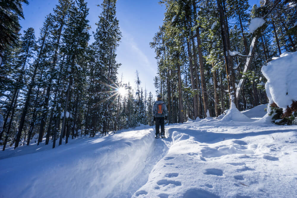 Лучшие места в США для одиночных путешествий