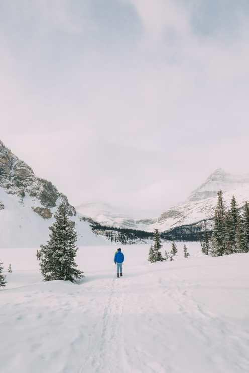 Вождение канадского эпоса Бульвар Ледяных полей и в поисках замороженных пузырей озера Абрахам (9)