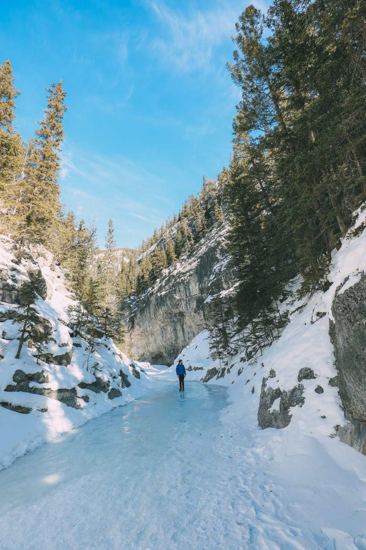 Грот-Каньон, волчьи собаки и канадские Скалистые горы (6)