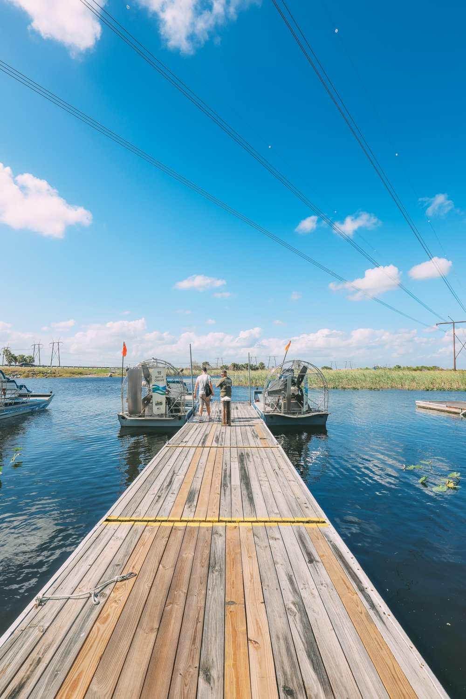 В поисках диких аллигаторов во Флориде (9)