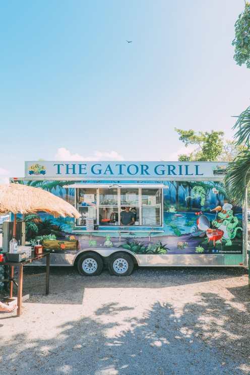 В поисках диких аллигаторов во Флориде (7)