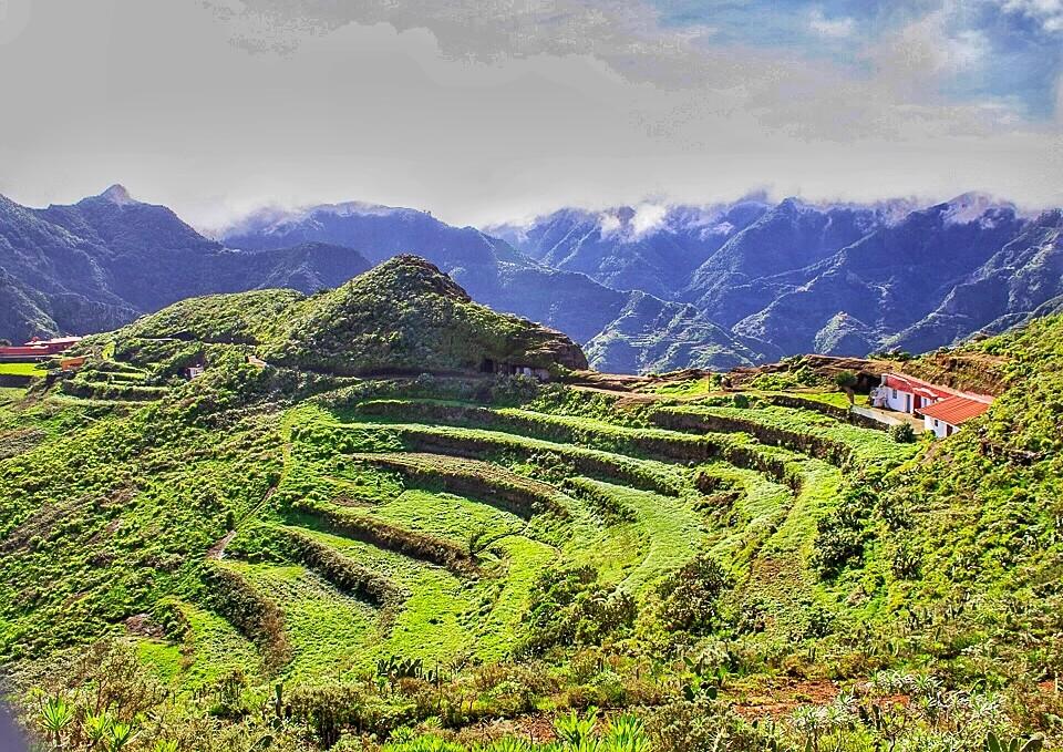 Террасы в сельском парке Анага, Тенерифе
