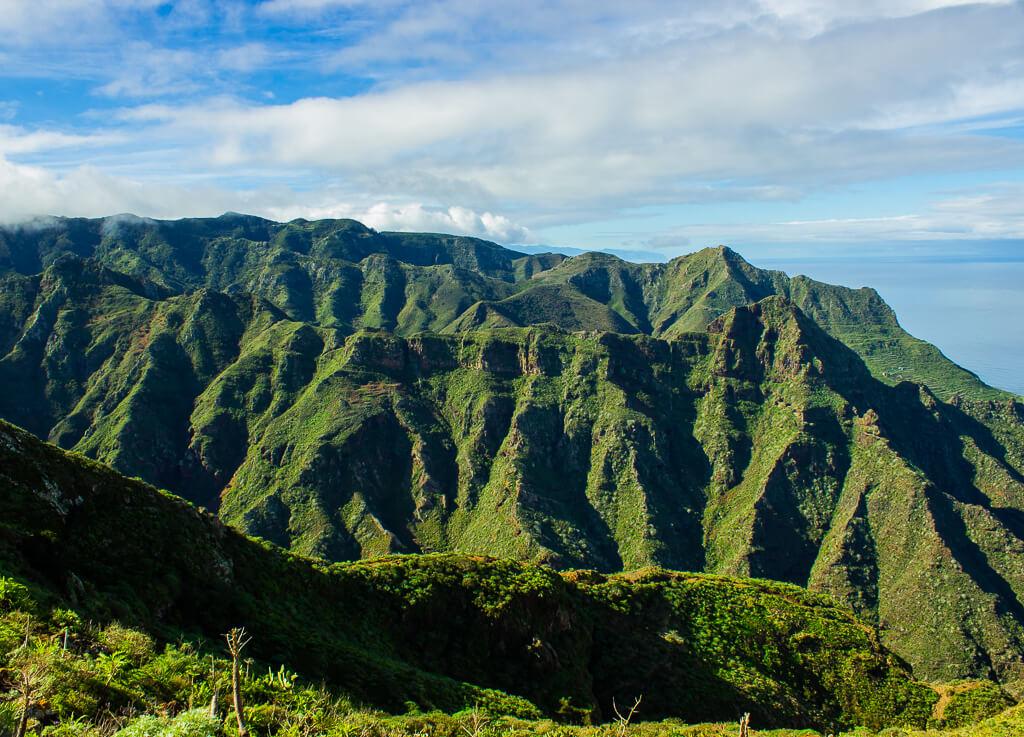 Прогулки в сельском парке Анага, Тенерифе