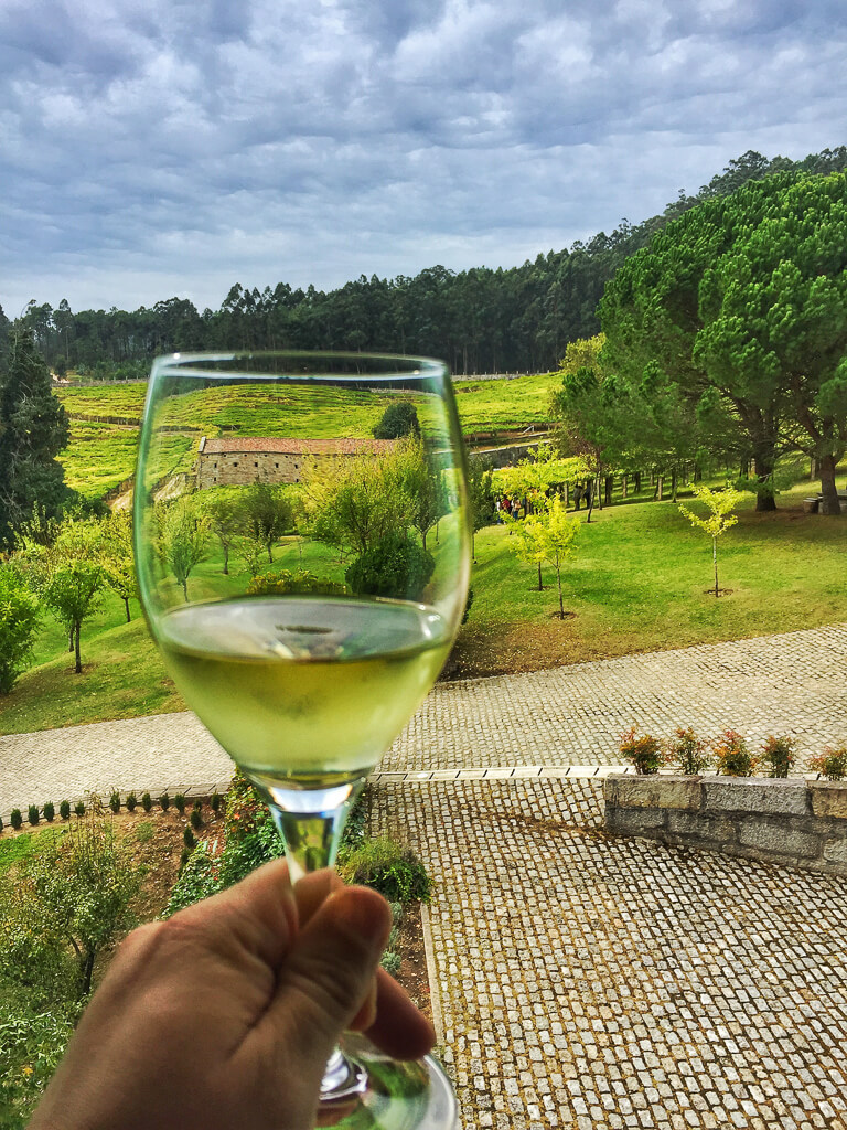 Вино Альбарино