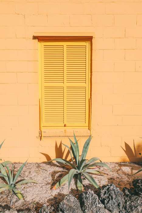Солнечные дни ... В Форт-Лодердейле, Флорида (22)