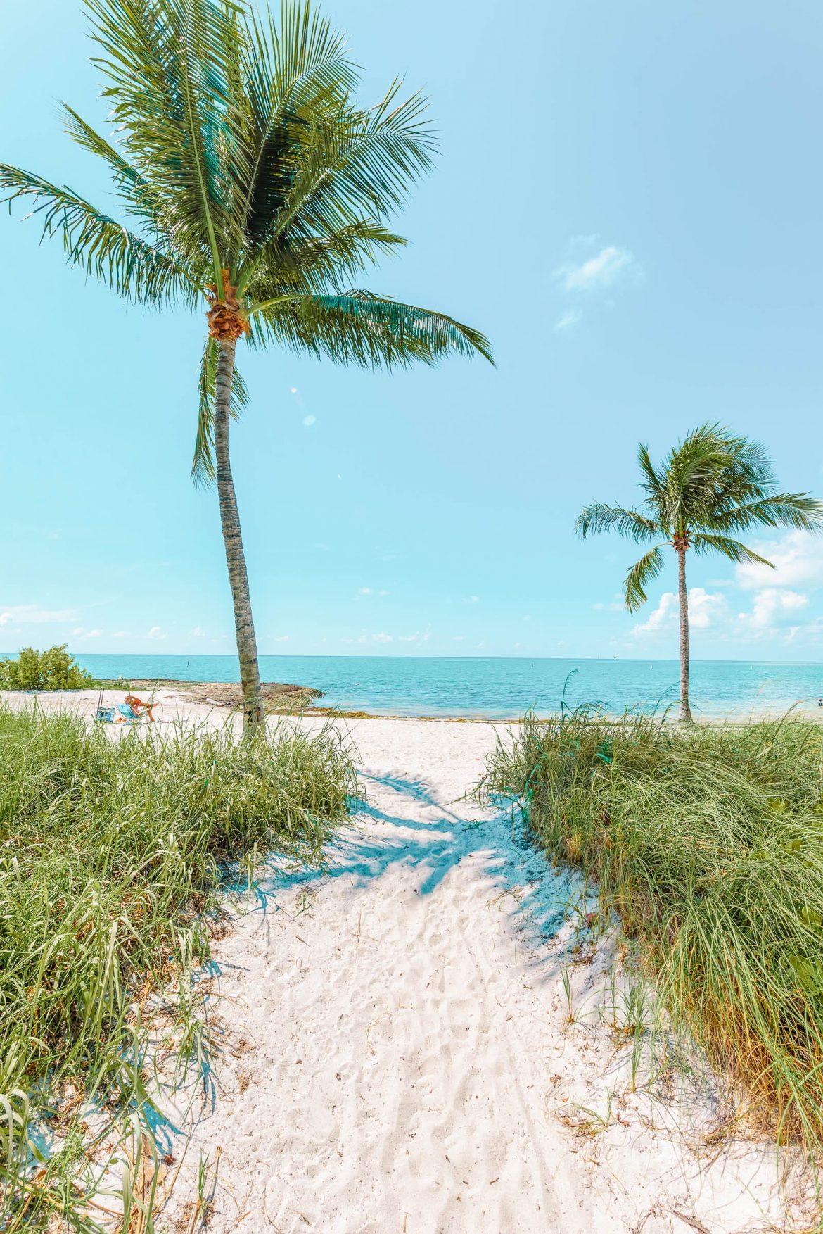 12 лучших занятий во Флорида-Кис