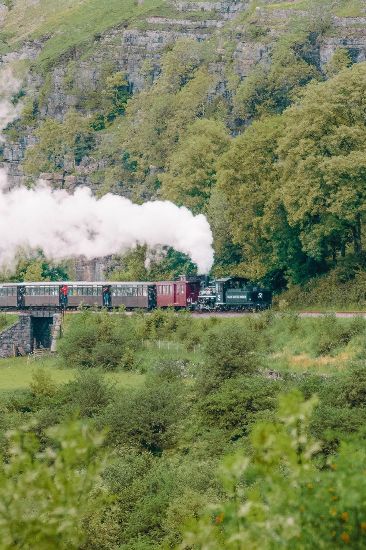 Горная железная дорога Брекон в Бр econ Beacons