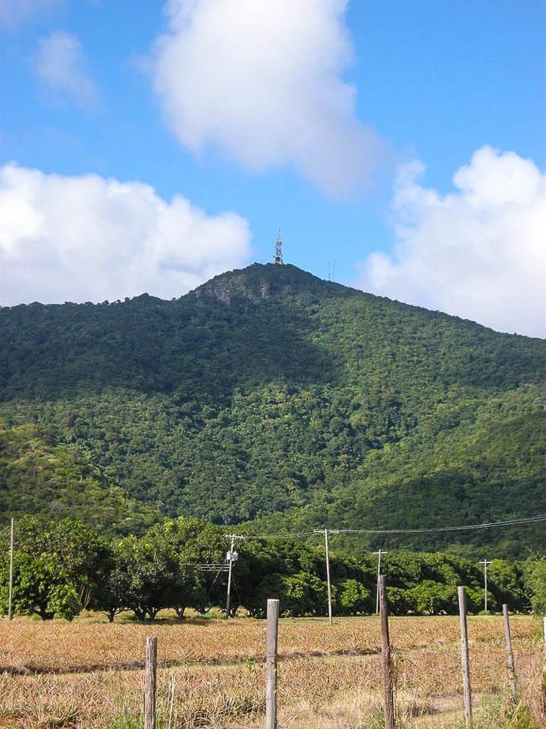 Гора Обама, Антигуа