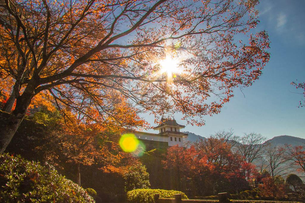 Осень в Японии в замке Гудзё Хатиман