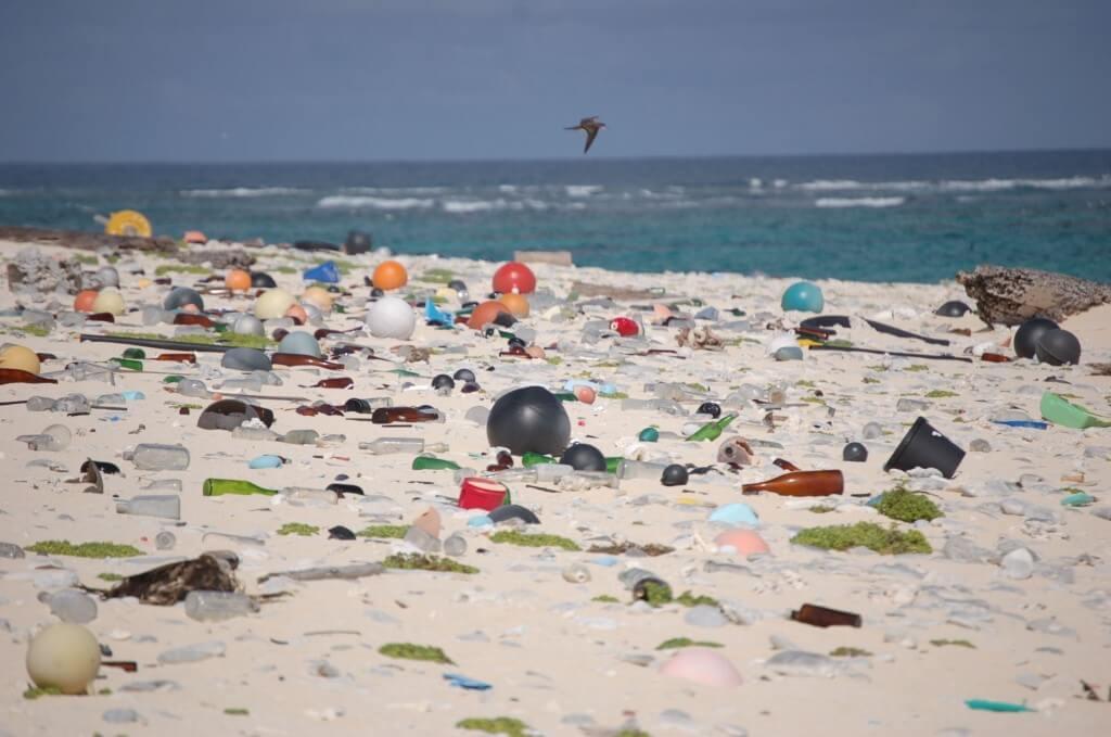 Пляж, полный пластика