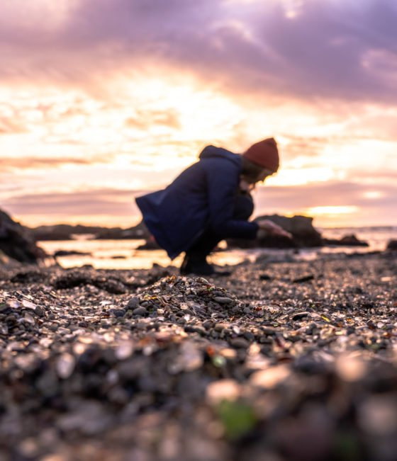 Стеклянный пляж форта Брэгг