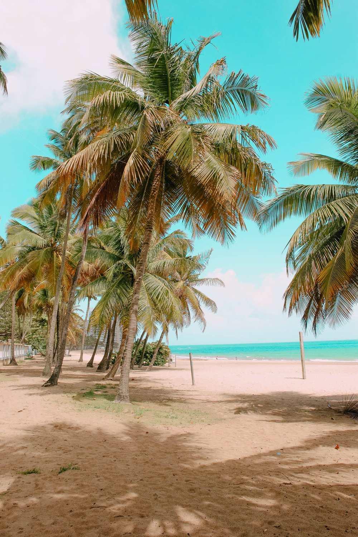 Лучший пляж в Сан-Хуане, Пуэрто-Рико