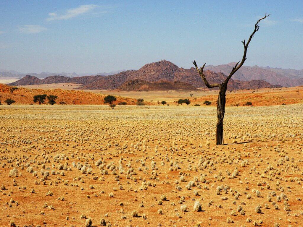 Пустыня Намиб, Намибия, Африка