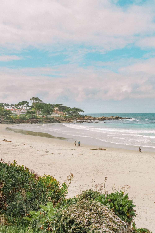 Пляж в Монтерее