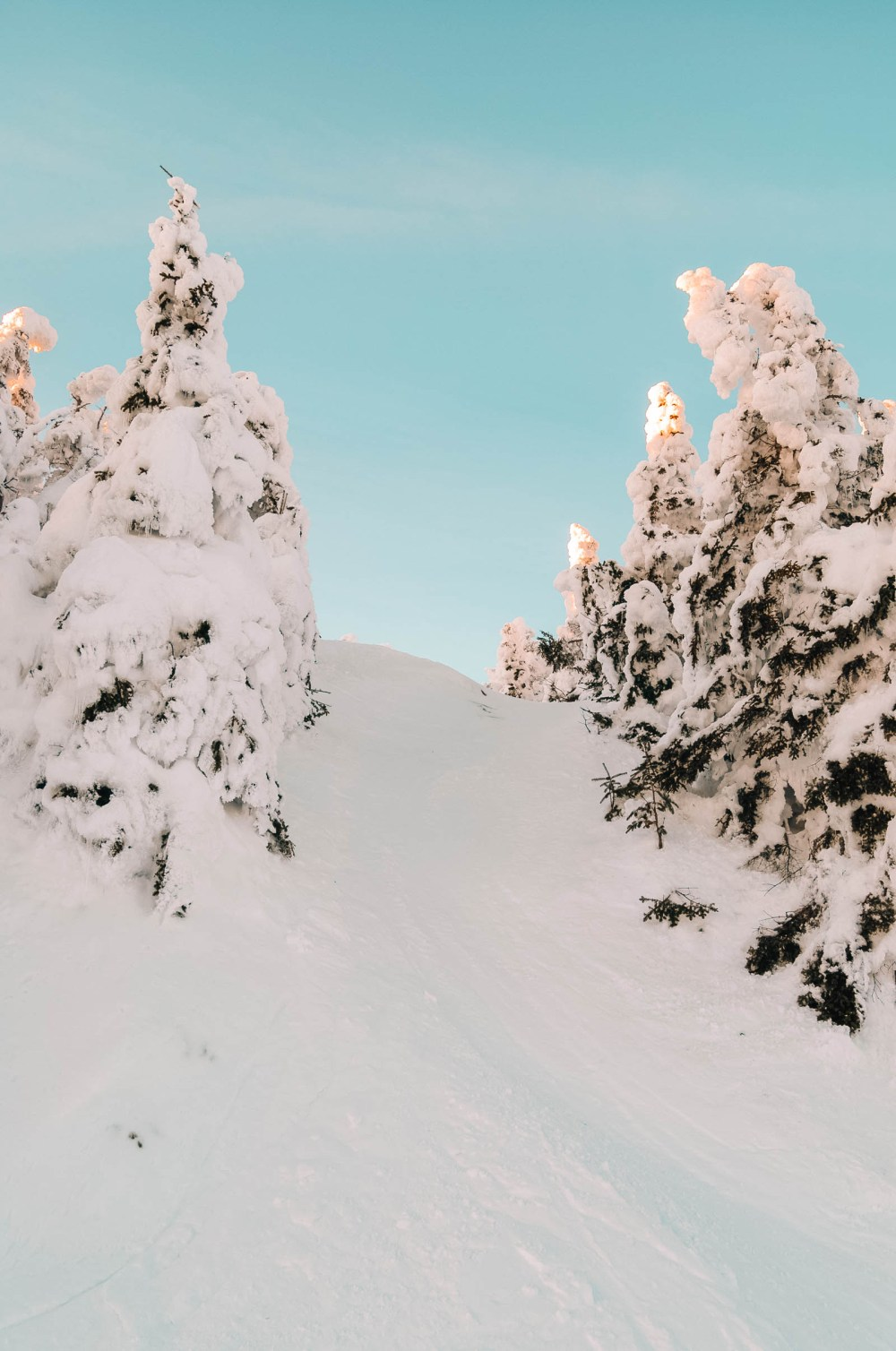 Катание на лыжах недалеко от Рино